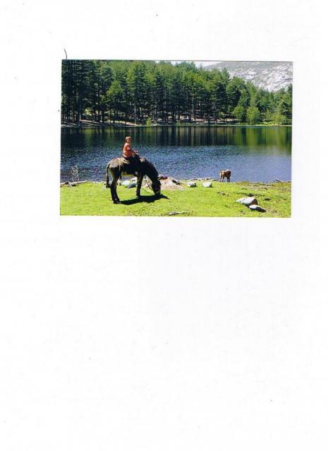 randonnée lac de Creno âne