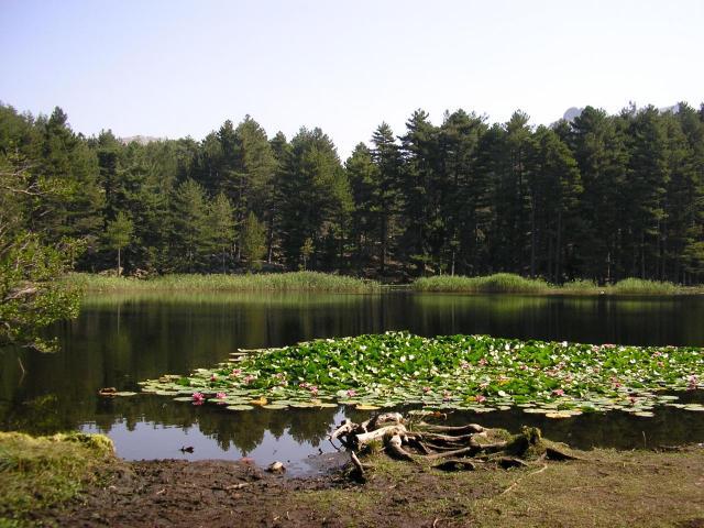 lac de crena